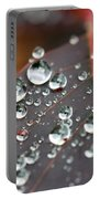 Water Drops On Cotinus Portable Battery Charger