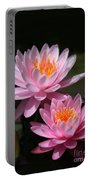 Water Lilies Love The Sun Portable Battery Charger by Sabrina L Ryan
