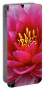 Water Lilly Portable Battery Charger by Frozen in Time Fine Art Photography