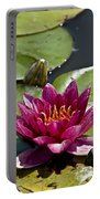 Water Lily Pictures 66 Portable Battery Charger