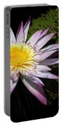 Water Lily With Lots Of Petals Portable Battery Charger