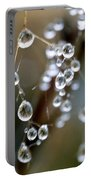 Water Pearls Portable Battery Charger