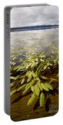 Water Plant Portable Battery Charger