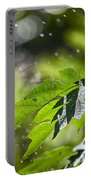 Water-the Essence Of Life V3 Portable Battery Charger