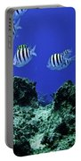 Water World One Portable Battery Charger