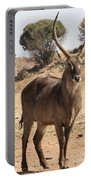 Waterbuck Male V2 Portable Battery Charger