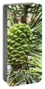 Watercolor Of Ripening Pine Cone Portable Battery Charger