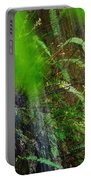 Waterfall Over Ferns Portable Battery Charger