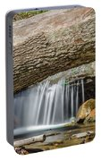Waterfall Under Fallen Log Portable Battery Charger