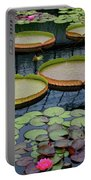 Waterlilies And Platters 2 Portable Battery Charger by Byron Varvarigos