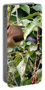 Waxwing Meal Portable Battery Charger