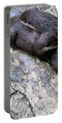 We Otter Snuggle Up Portable Battery Charger