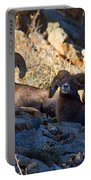 We Three Kings Portable Battery Charger