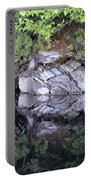 Weathered Reflection Portable Battery Charger