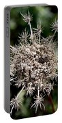 Weeds Portable Battery Charger