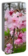 Weeping Cherry Blossoms Portable Battery Charger