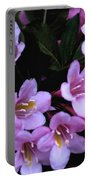 Weigela Blossoms Portable Battery Charger