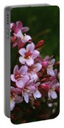 Weigela Branch Portable Battery Charger