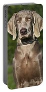 Weimaraner Hunting Dog Portable Battery Charger