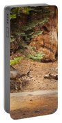 Welcome Home - Sequoia National Forest Portable Battery Charger