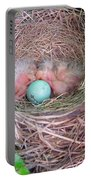 Welcome To The World - Hatching Baby Robin Portable Battery Charger