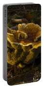 Well Lit Fungi Portable Battery Charger