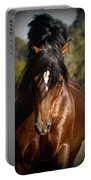 Welsh Cob Stallion Portable Battery Charger