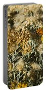West Goast Lady Vanessa Annabella 3 Portable Battery Charger