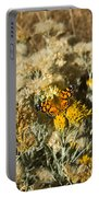 West Goast Lady Vanessa Annabella 4 Portable Battery Charger