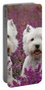 West Highland Terrier Dogs In Heather Portable Battery Charger