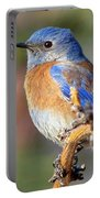 Western Bluebird Profile Portable Battery Charger