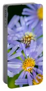 Western Daisies Asters Glacier National Park Portable Battery Charger
