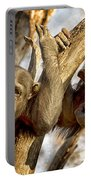 Western Lowland Gorillas Portable Battery Charger