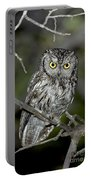 Western Screech Owl Portable Battery Charger