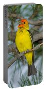 Western Tanager Singing Portable Battery Charger