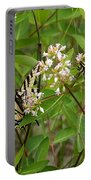 Western Tiger Swallowtail Butterflies Portable Battery Charger
