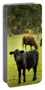 Wet Calf Portable Battery Charger