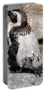 Wet Penguin Portable Battery Charger