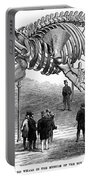 Whale Skeleton, 1866 Portable Battery Charger