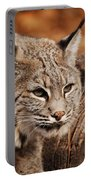 What A Face Portable Battery Charger