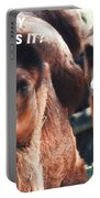 Camel What Day Is It? Portable Battery Charger