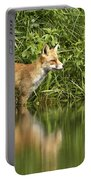 What Does The Fox See Portable Battery Charger