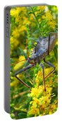 Wheel Bug  Portable Battery Charger