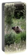 When Bears Dream Portable Battery Charger