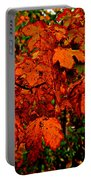 Where Has All The Red Gone - Autumn Leaves - Orange Portable Battery Charger