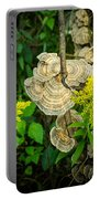 Whirled Turkey Fungus Portable Battery Charger