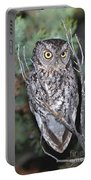 Whiskered Screech Owl Portable Battery Charger