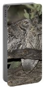 Whiskered Screech Owls Portable Battery Charger