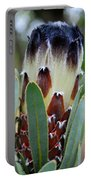 White And Brown Protea  Portable Battery Charger