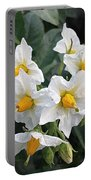 Garden Blossoms White And Yellow Garden Blossoms Portable Battery Charger